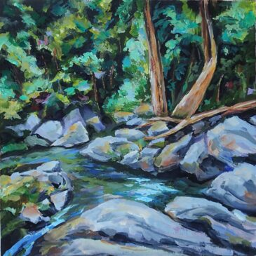 Bocawina Falls